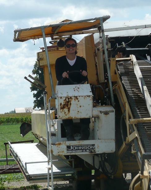 Jess drives the tomato harvester, circa 2009, Fremont, Ohio