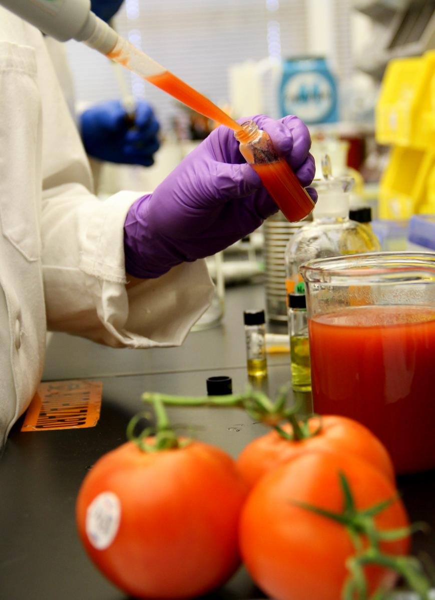 tomatoes and pipetting